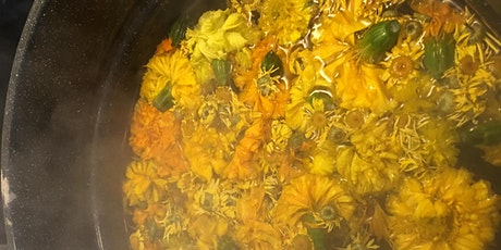 Natural Plant Dyeing tickets