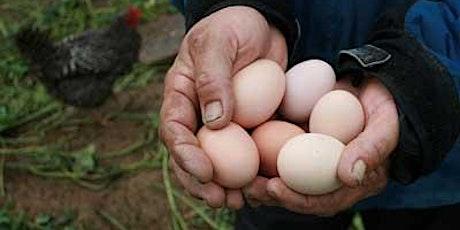 Egg Grading Workshop tickets