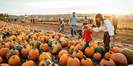 Heartland Charter School-Pumpkin Patch at the U-Pick Blueberries tickets