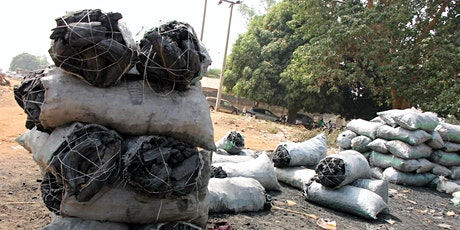 The Global Charcoal Trade and its Impact on Wood Energy Resources in Africa tickets
