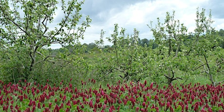 How can agroforestry contribute towards biodiversity conservation? tickets