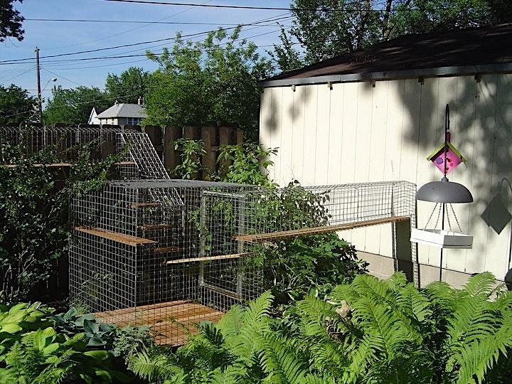 Twin Cities First Catio & Coop Tour image