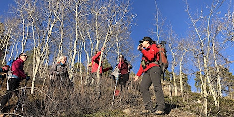 Guided walk - Riverdale tickets