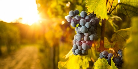 Going Au Natural - Intro to Natural Wines tickets