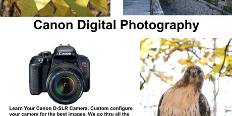 Learn your CANON camera from the comforts of your home. tickets
