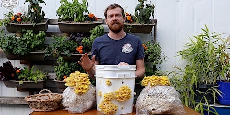 Little Acre Mushroom's Class for Kids tickets