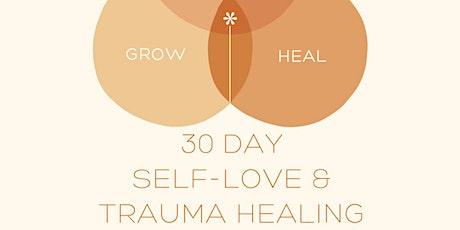 30 Day Self- Love & Trauma Healing Challenge tickets