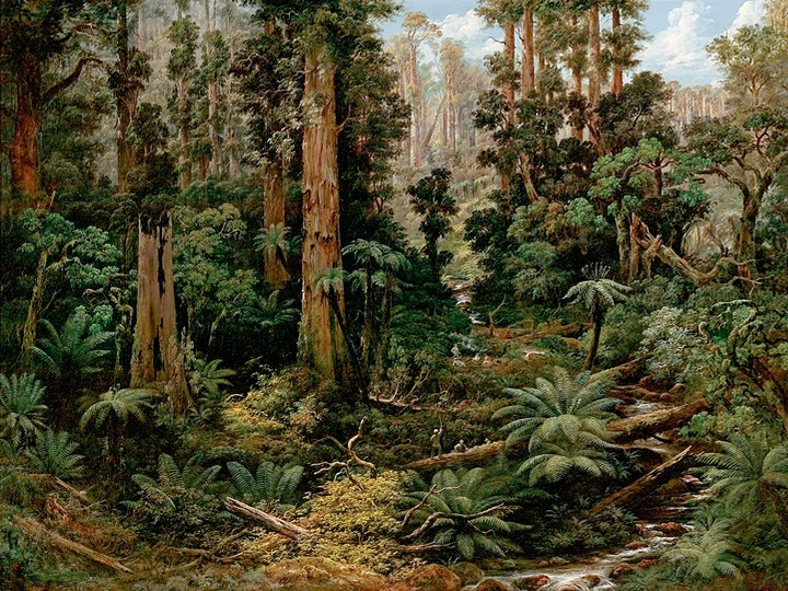 Art Gallery of South Australia  Guided Tours image