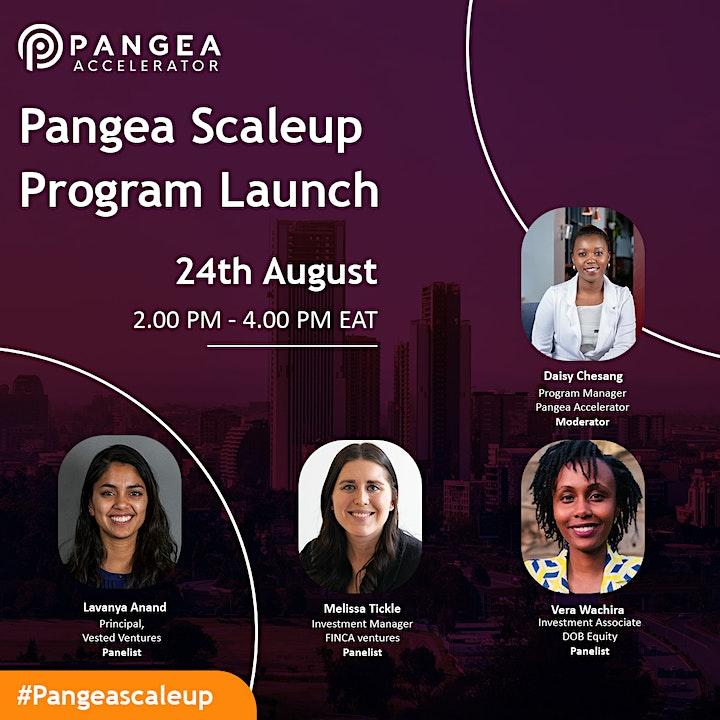 Pangea Accelerator ScaleUp Program Launch image