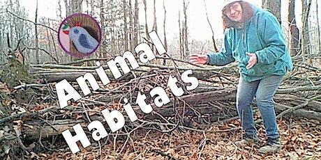 Junior Animal Habitats Badge Se23 tickets