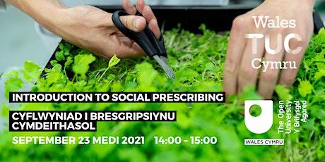 Introduction to Social Prescribing: Cyflwyniad i Bresgripsiynu Cymdeithasol tickets