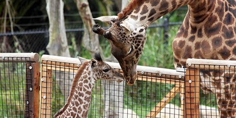 Heartland Charter School- Santa Barbara Zoo tickets