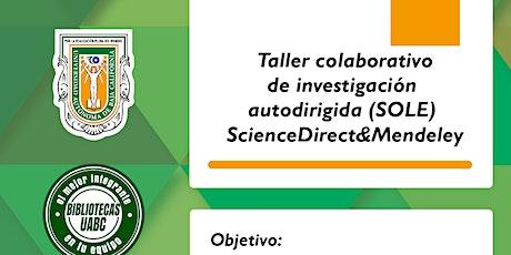 Taller colaborativo de investigación autodirigida (SOLE) ScienceDirect&Mend entradas