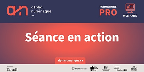 Accompagnement professionnel :  Séance en action - Guider et s'adapter tickets