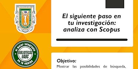 El siguiente paso en tu investigación: analiza con Scopus entradas