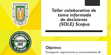 Taller colaborativo de toma informada de decisiones (SOLE). entradas