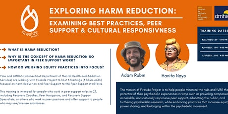 Exploring Harm Reduction & Peer Support tickets