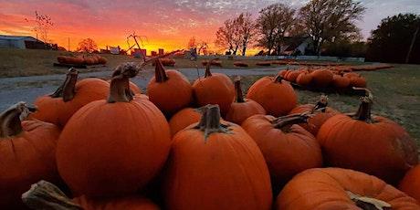 Pumpkin Festival at Shepherd's Cross tickets
