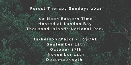 Sunday Forest Therapy Walks at Landon Bay tickets