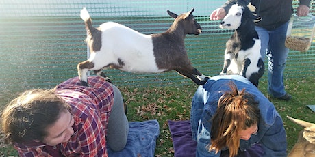 Goat Yoga @ Patch on the Point 2021 tickets