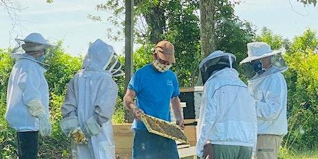 BeeKeeping 101  2021-2022 tickets