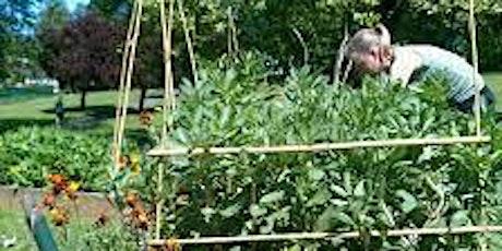 Get Growing Trail!! St George Park Community Garden tickets