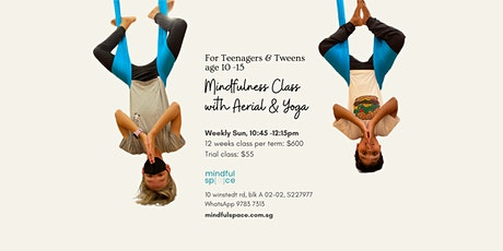 Mindfulness Class with Aerial and Yoga For Teenagers and Tweens age 10-15 tickets