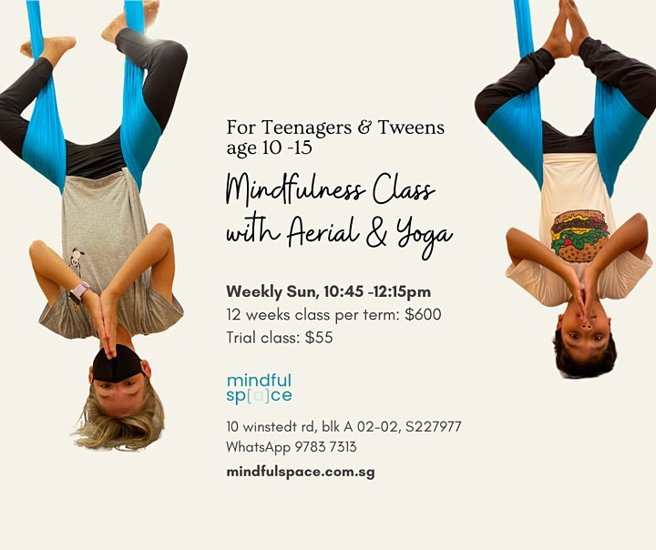 Mindfulness Class with Aerial and Yoga For Teenagers and Tweens age 10-15 image