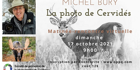 Conférence sur la photographie de cervidés avec Michel Bury billets