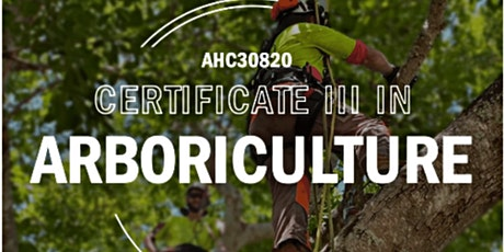 Mackay   AHC30820 Certificate III in Arboriculture tickets