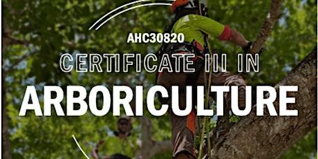 Townsville | AHC30820 Certificate III in Arboriculture tickets