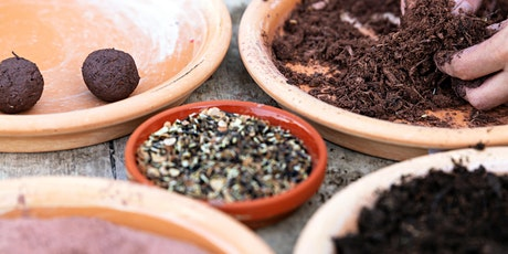 Seed ball Workshops with Little Urban Farms tickets