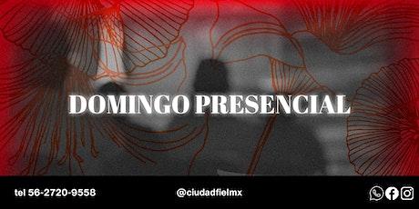 Servicio Presencial en Ciudad Fiel - Domingo boletos