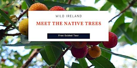 Themed Tour: Wild Ireland – Meet the Native Trees tickets