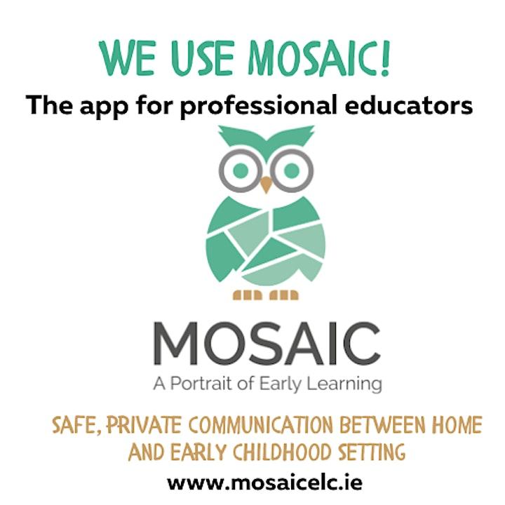 MOSAIC  Demonstration image