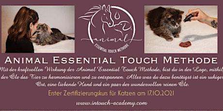 Animal Essential Touch Methode - Zertifizierungskurs Katze Tickets