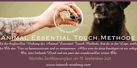 Animal Essential Touch Methode - Zertifizierungskurs Hund Tickets
