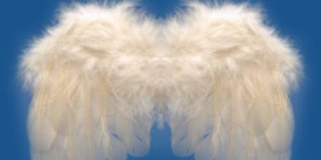 INSEAD BUSINESS ANGELS ALUMNI 46ème REUNION tickets