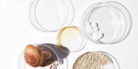 NEW skinformation workshop - acids and exfoliation tickets
