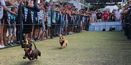 Karbachtoberfest Wiener Dog Races entradas