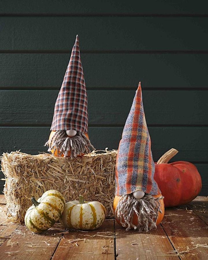 Pumpkin Gnome & Succulent Pumpkin Planter Workshop image