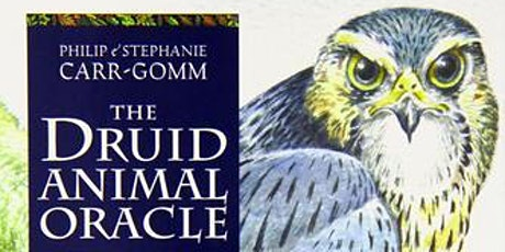 Druid Animal Oracle Deck Training: Learn how to read animal cards tickets