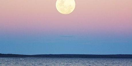 Full Moon Gathering with WIILD Womxnhood tickets