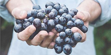 October Harvest Celebration @ Freedom Run Winery tickets