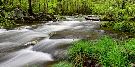 Hunt's Photo Adventure: Great Smoky Mountain National Park tickets