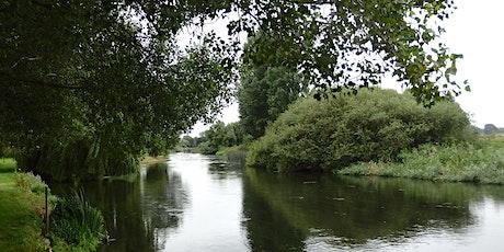 Stour Valley Park - Autumn Workshops - Kingston Lacy, Bishops Court Farm tickets