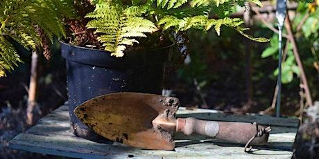 Failsafe Garden Plants at Mells Walled Garden tickets