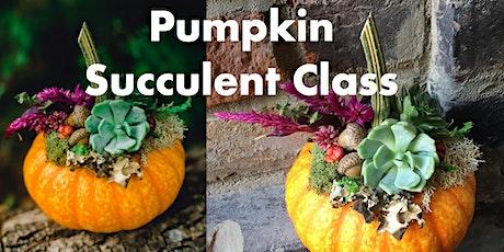 Pumpkin Succulent Class tickets