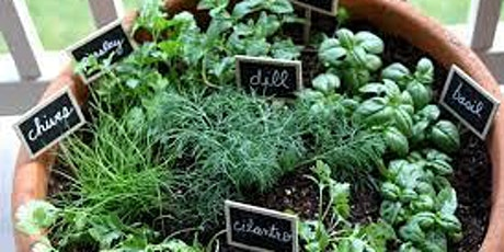 ***Online Only***  Growing and using Herbs ***Online Only*** tickets
