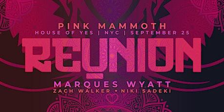 Pink Mammoth: Reunion tickets